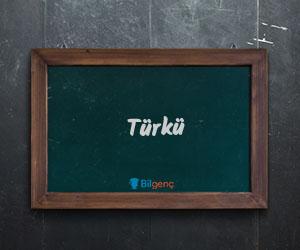 Türkü Nedir