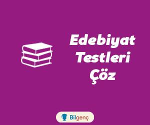 Edebiyat Testleri Çöz