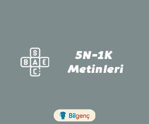 5N-1K Metinleri