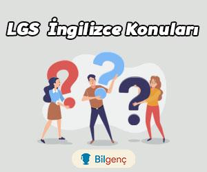 LGS İngilizce Konuları ve Soru Dağılımı