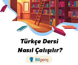 Türkçe Nasıl Çalışılır?